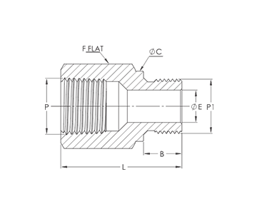 female-npt-to-male-iso-parallel-thread-drawing-industrial-valves-manifolds-ivi-india-mumbai